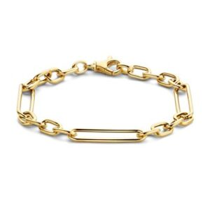 14 Karaat Gouden Anker & Closed for ever Schakel armband - Breedte 6,4mm - Lengte 19cm