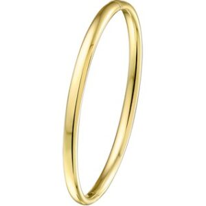 14 Karaat Gouden Bangle Scharnier Armband ovale buis - Zilveren kern - Breedte 3mm