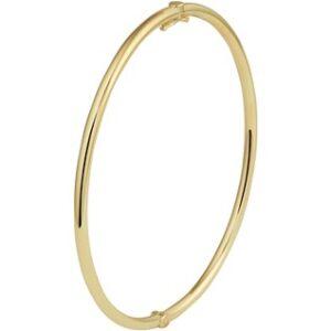 14 Karaat Gouden Bangle Scharnier Armband Ronde buis - Zilveren kern - Breedte 2,5mm
